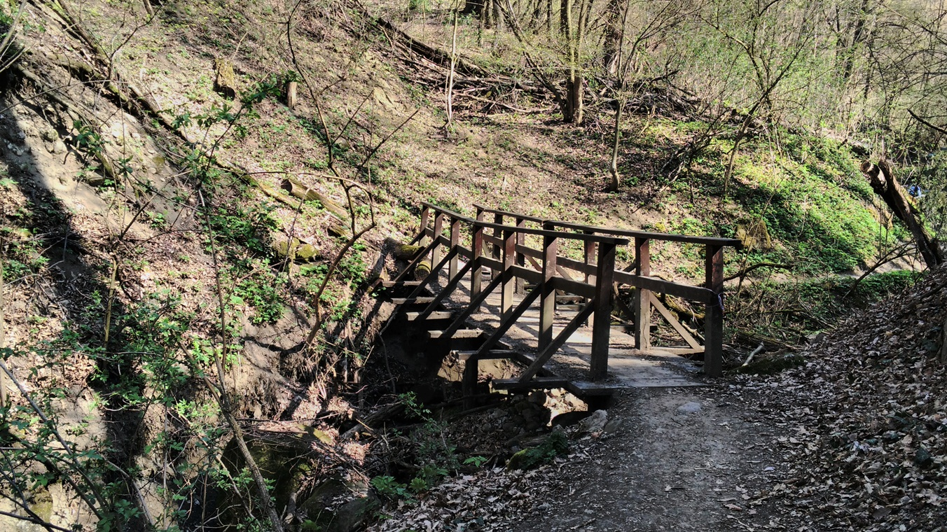 Híd_Tesztvilág